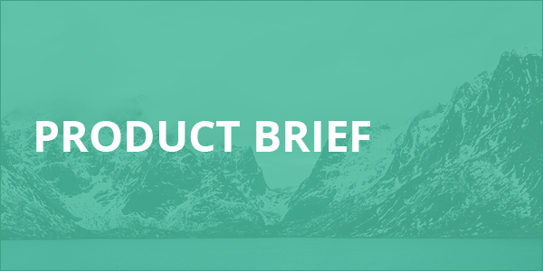 Product Brief-1
